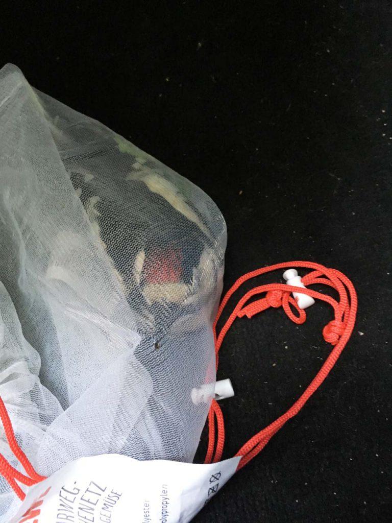 Verletzter Jungspecht auf dem Weg zur Tiho im NABU Mehrzweck Frischenetz. Im wahrsten Sinne des Wortes in's Netz gegangen