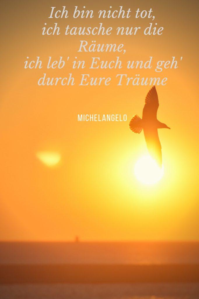 """Strahlender Sonnenaufgang mit einer Möwe und den Trostworten von Michelangelo """"Ich bin nicht tot"""""""