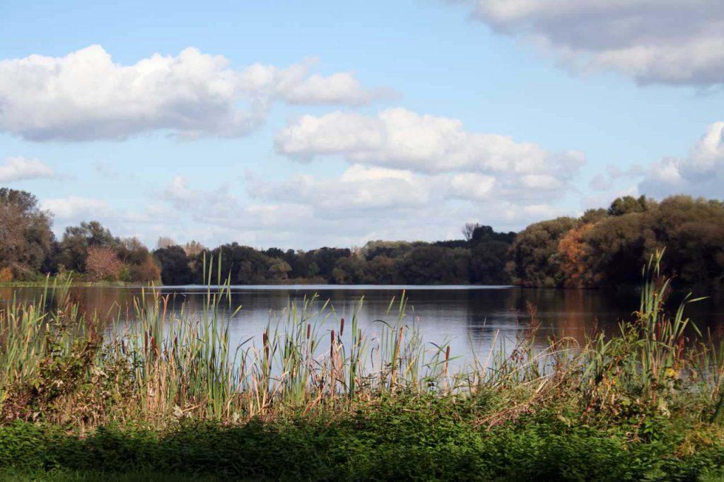 Der Südsee in Braunschweig ein wunderschönes Naherholungsgebiet