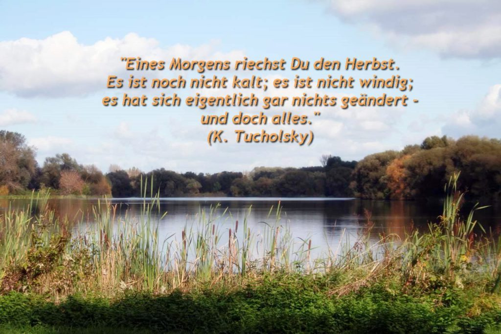 Südsee in Braunschweig mit einem Herbstzitat von Kurt Tucholsky