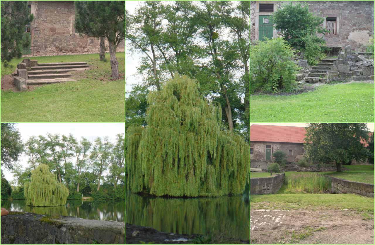 Collagen Außenbereich des Klosters Marienrode