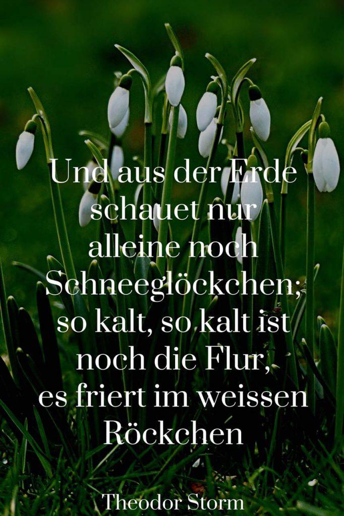 März Theodor Storm im Zitat im Bild