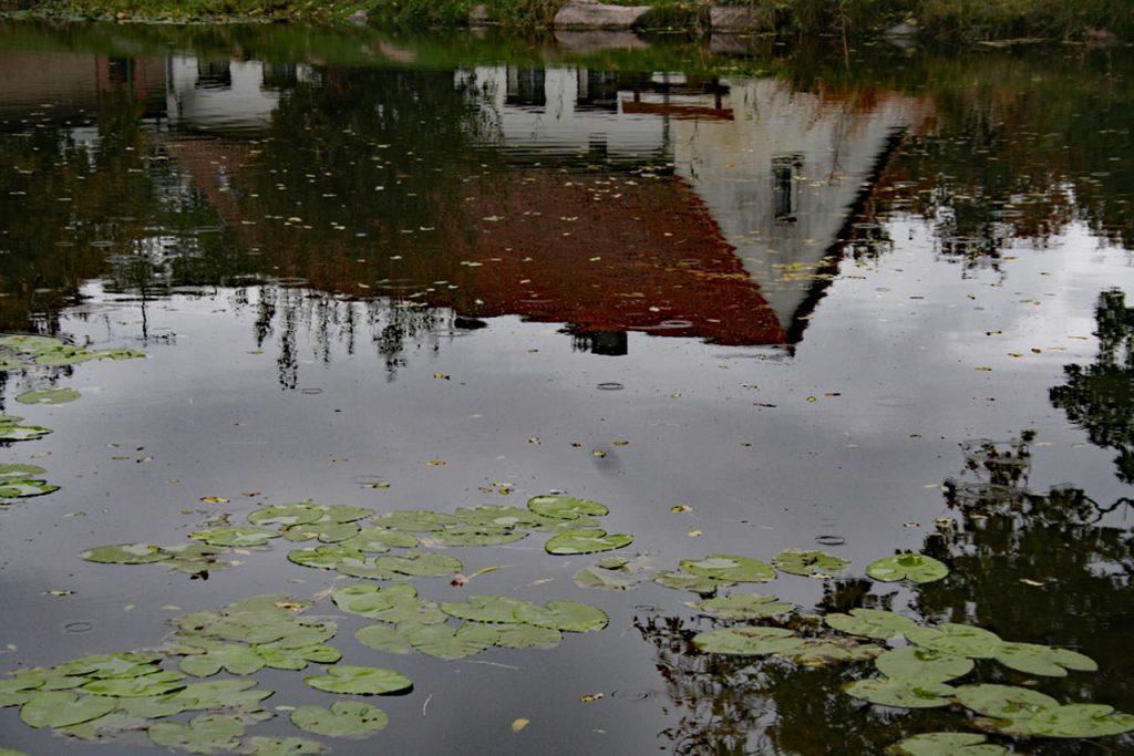 Die Welt steht Kopf Spiegelungen im Wasser auf der Insel Usedom