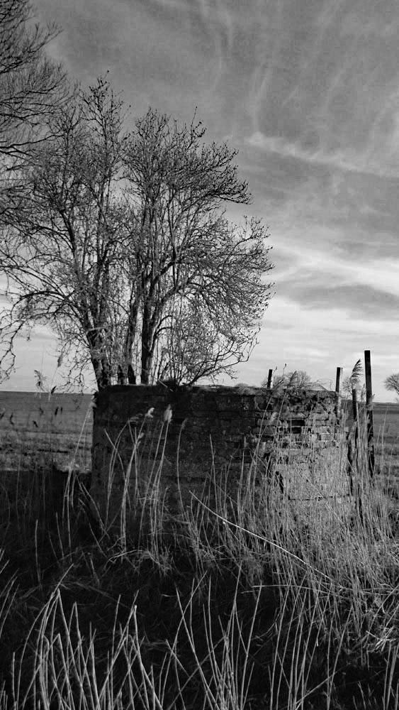 Ein Brunnen auf dem Felde alter Brunnen in schwarz-weiß