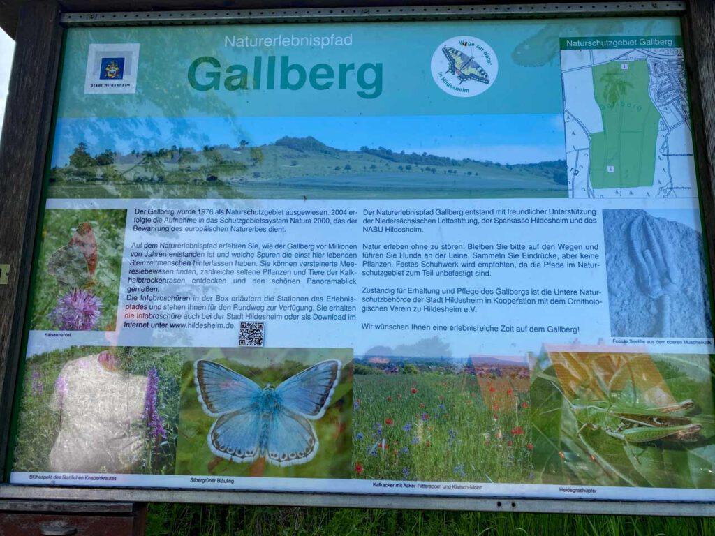 Hinweistafel zum Naturerlebnispfad Gallberg