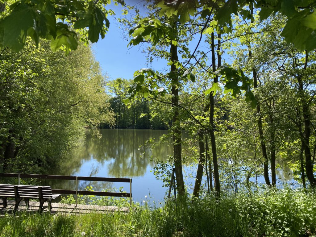 kleiner See und Parkbank