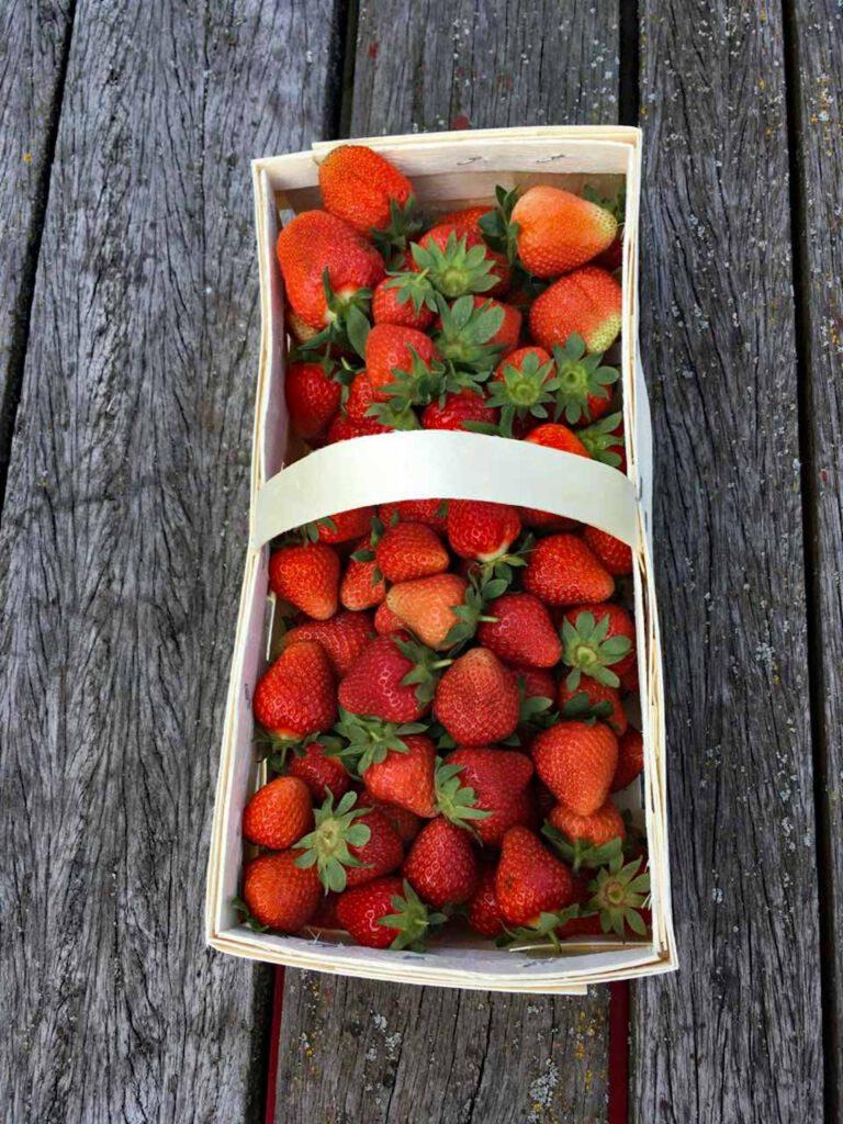 Erdbeerkörbchen gefüllt mit leckeren Erdbeeren