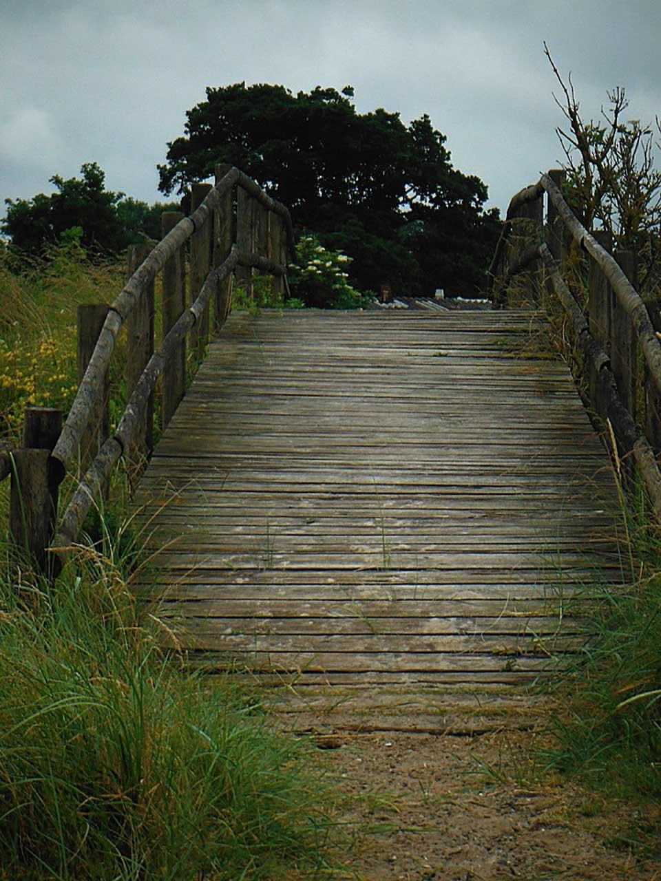 Dünen und Brücke eine alte Holzbrücke