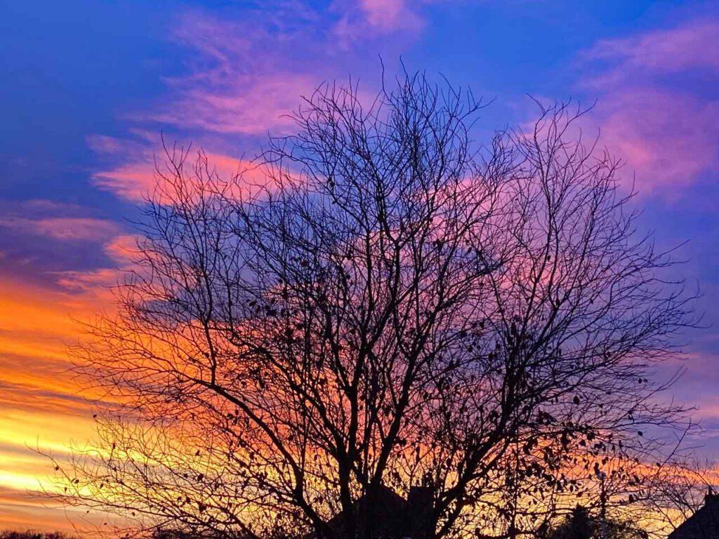 Bunter Sonnenaufgang im Herbst