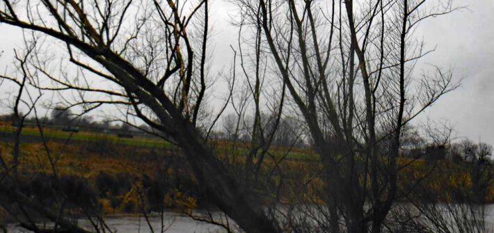 Die weiteren Aussichten regnerisch