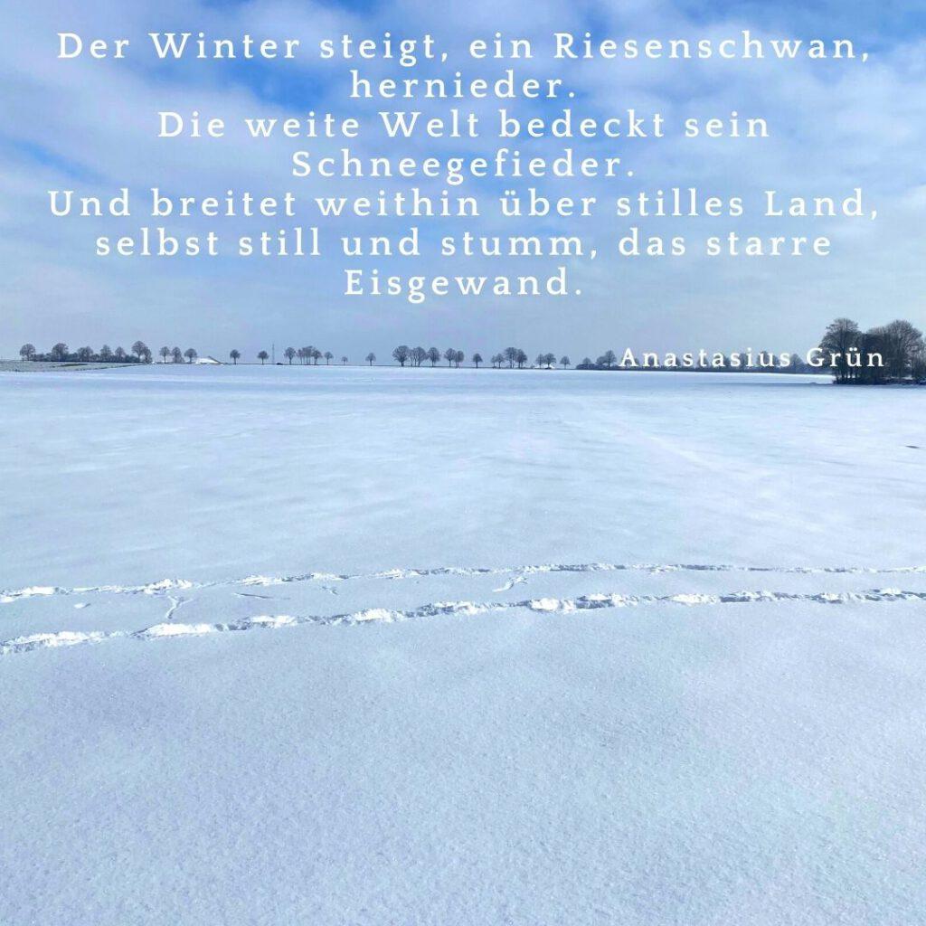 Der Winter steigt, ein Riesenschwan, hernieder. Die weite Welt bedeckt sein Schneegefieder. Und breitet weithin über stilles Land, selbst still und stumm, das starre Eisgewand