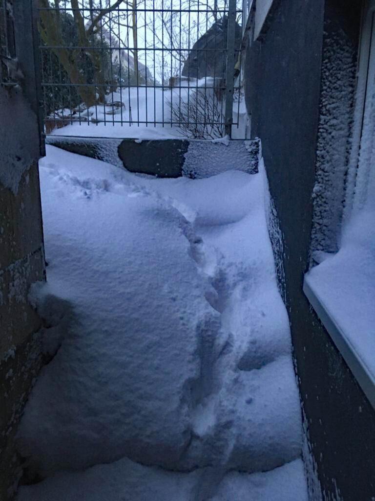 Kellereingang von Schnee verschüttet