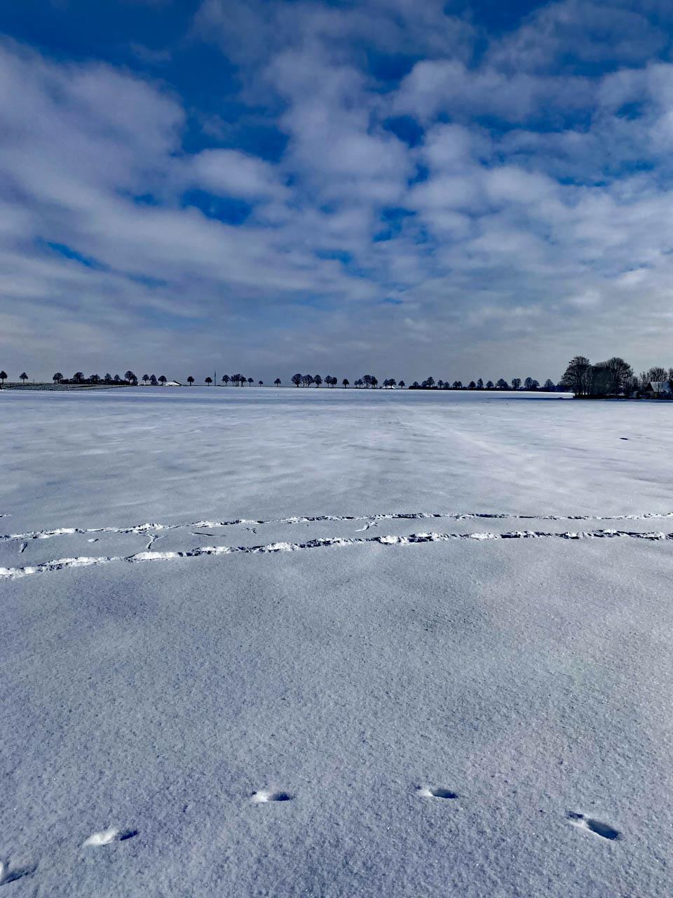 Schneelandschaft in Niedersachsen
