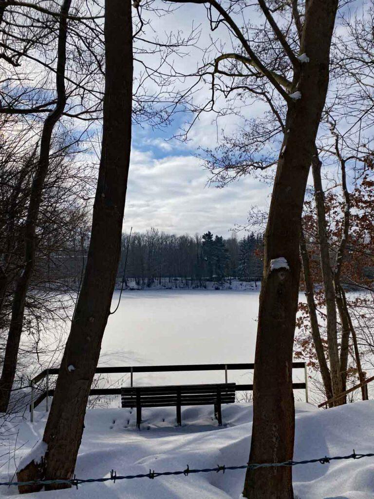 Winter 2021 in Niedersachsen See gefroren