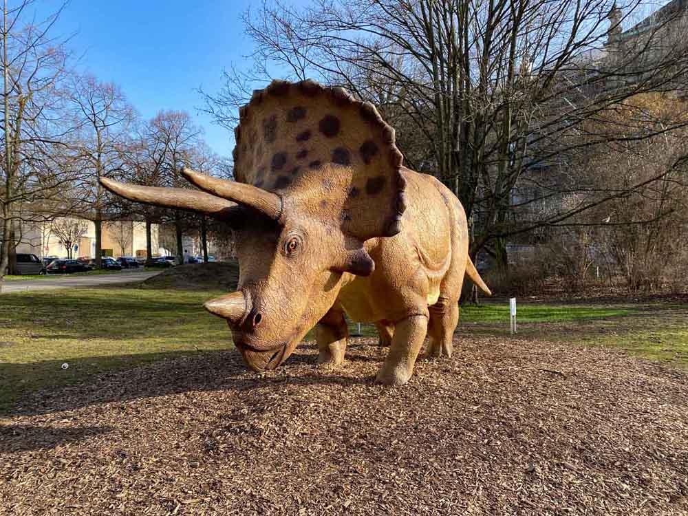 Gibt es denn auch Kinosaurier? Triceratops