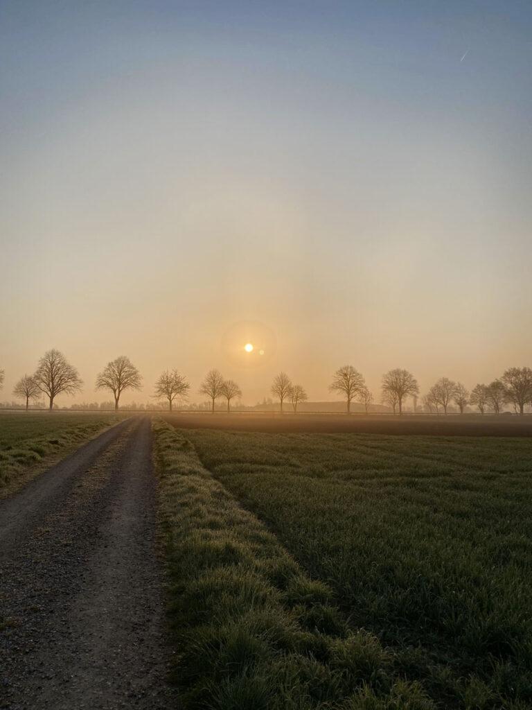 Sonnenaufgang Der Tag erwacht