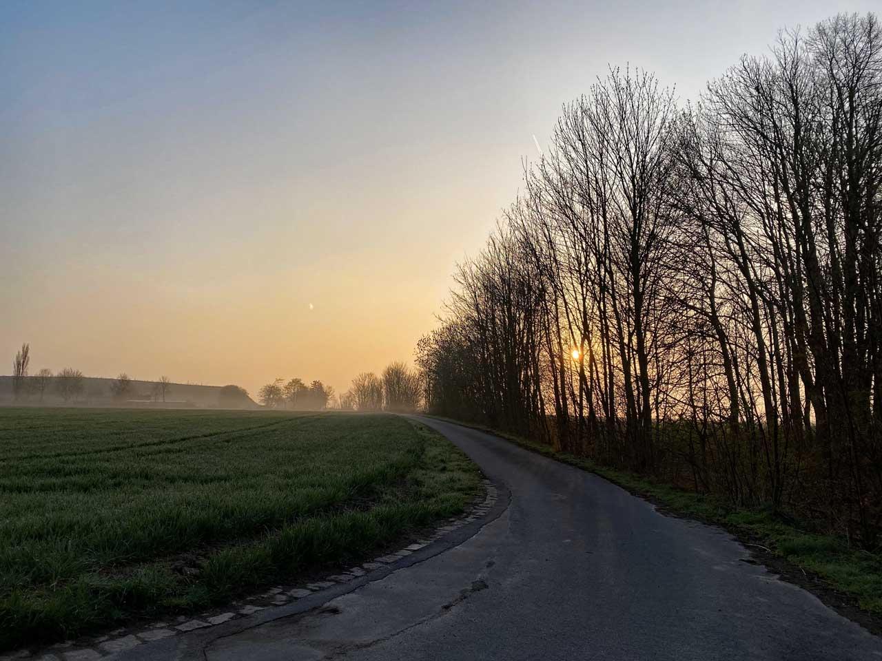 Die Sonne ist noch nicht über den Bäumen
