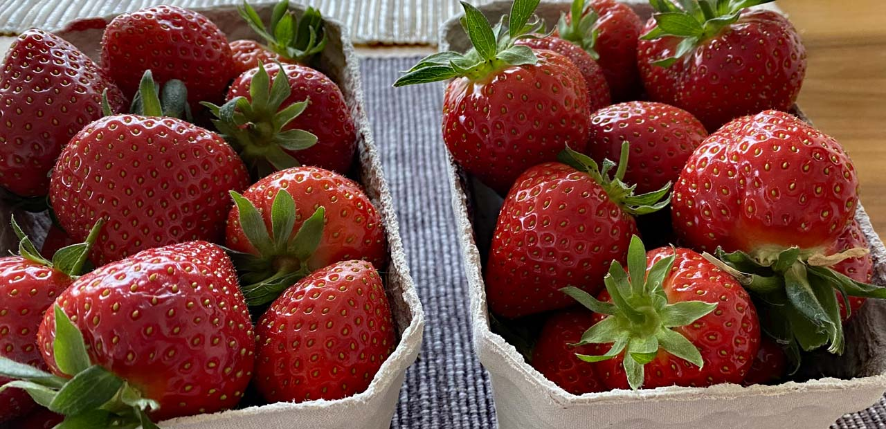 Verstecktes Rot für Ich seh rot und rote Erdbeeren