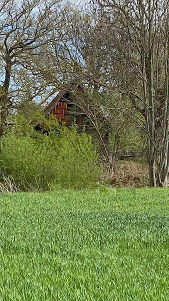 Old Barn Alte Scheune ganz versteckt im Wäldchen