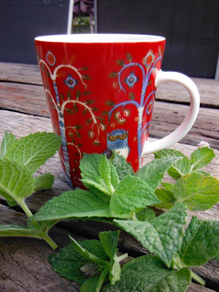 Abwarten und Tee trinken aus einer schönen Teetasse