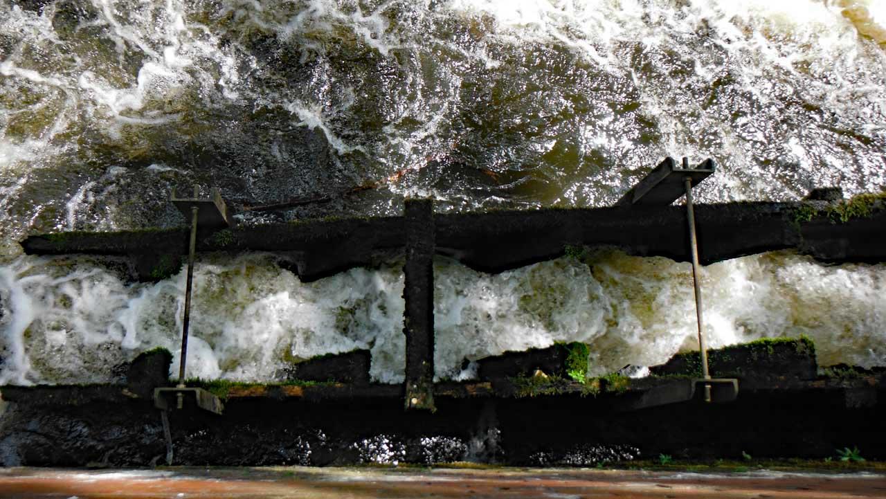 Fischtreppe an der Brausebrücke