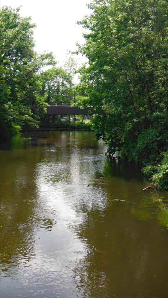 Ilmenau fließt ruhig durch Lüneburg